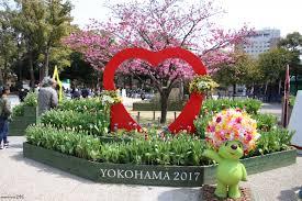 横浜の緑への取組み
