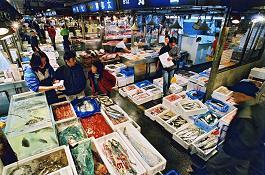 国際・経済・港湾委員会 視察 横浜中央卸売市場